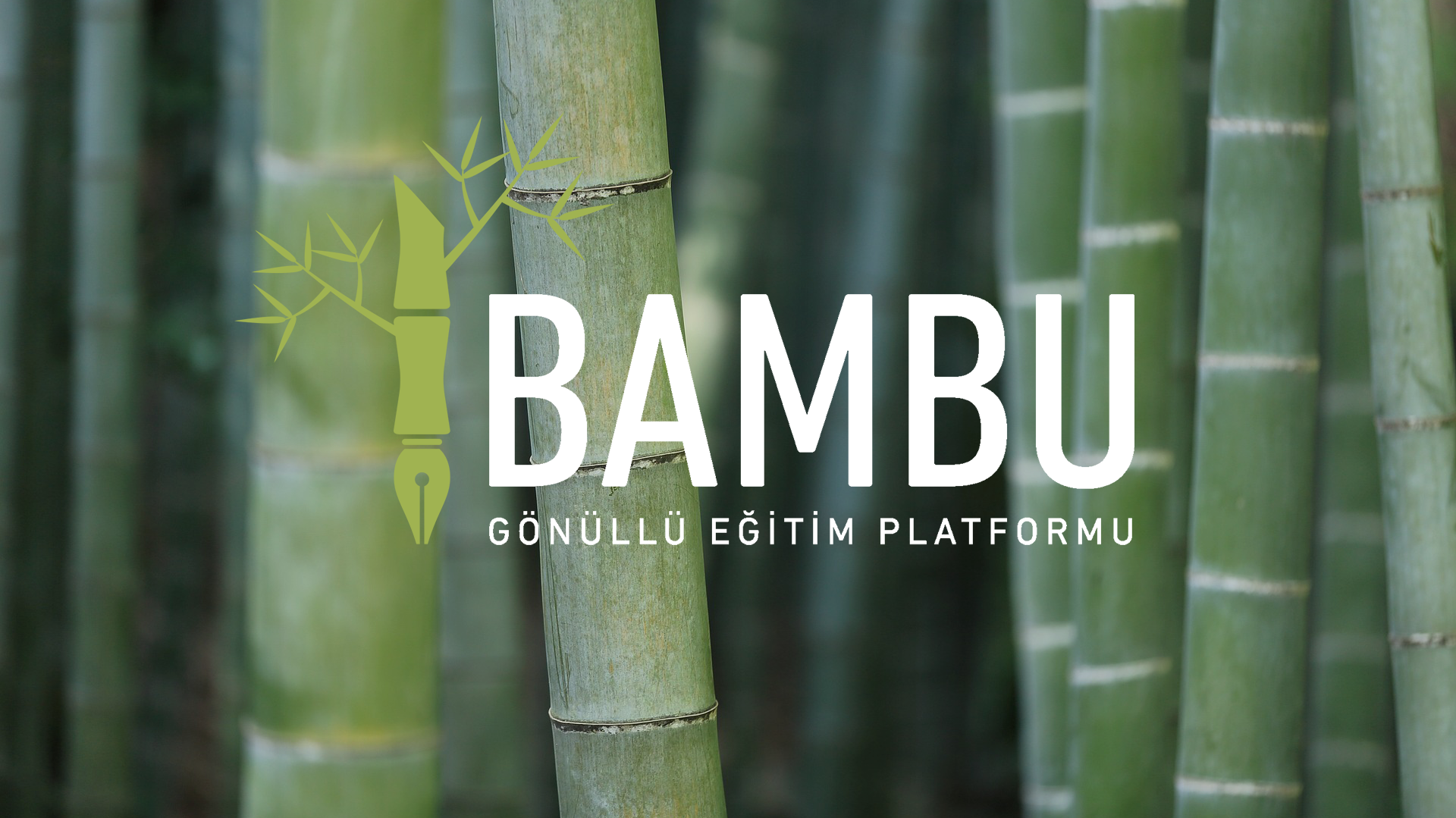 Bambu Gönüllü Eğitim Platformu